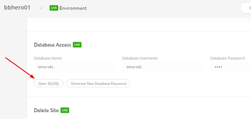 access-phpmyadmin-kinsta-hosting1-min