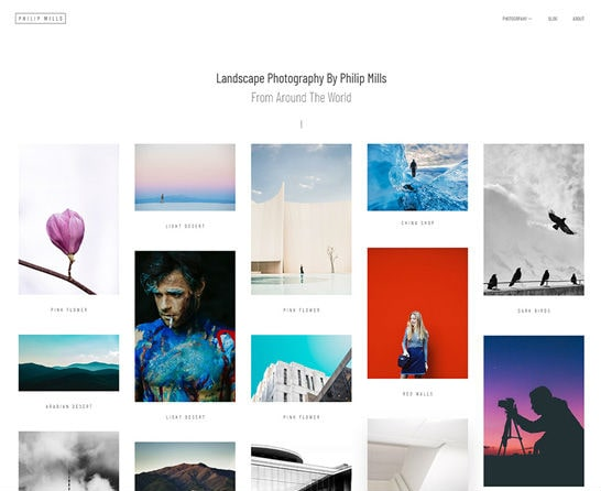 phlox-wordpress-theme-photography-min