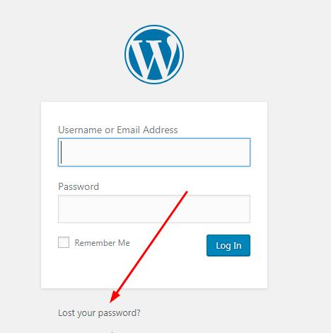 wordpress-lost-your-password1-min